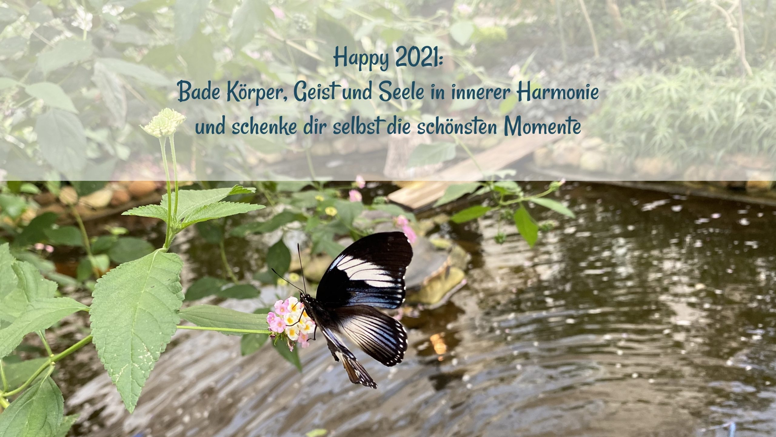 Yoga Feel-Good Hamburg Volksdorf Ahrensburg Entspannung Achtsamkeit Gesundheit Bianca Pagel Happy New Year
